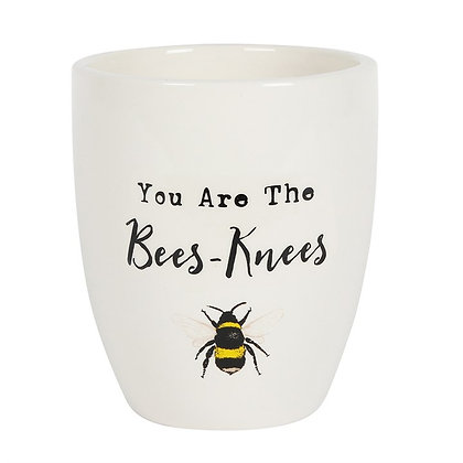 Bees Knees Ceramic Plant Pot