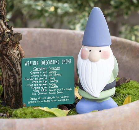 Weather Forecasting Garden Gnome