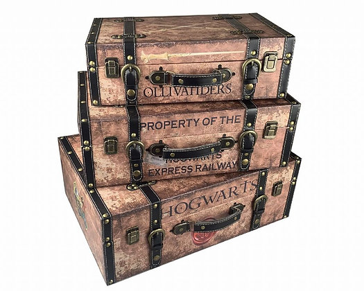 Harry Potter Suitcases