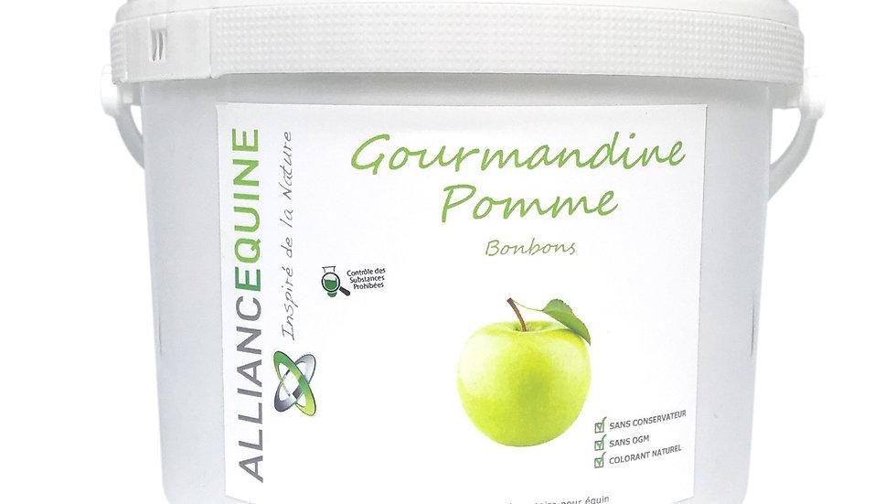 Gourmandine pomme alliance equine