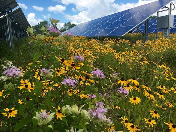 Solar Facility.jpg