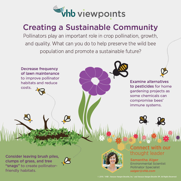 Creating a Sustainable Community