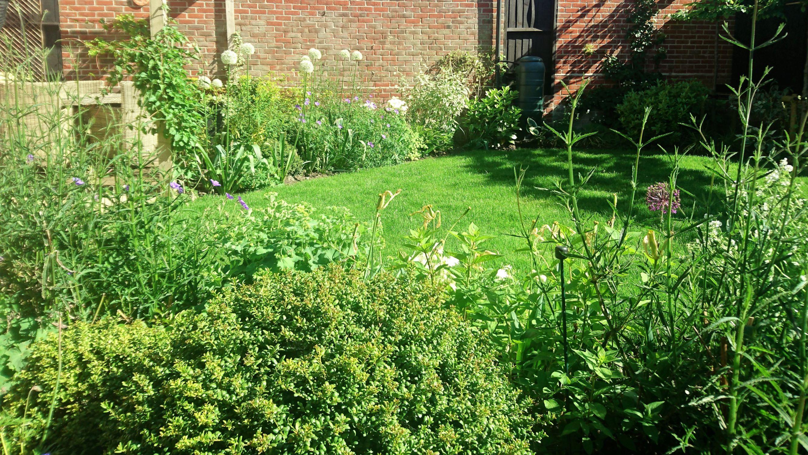 small town garden landscape 08.jpg