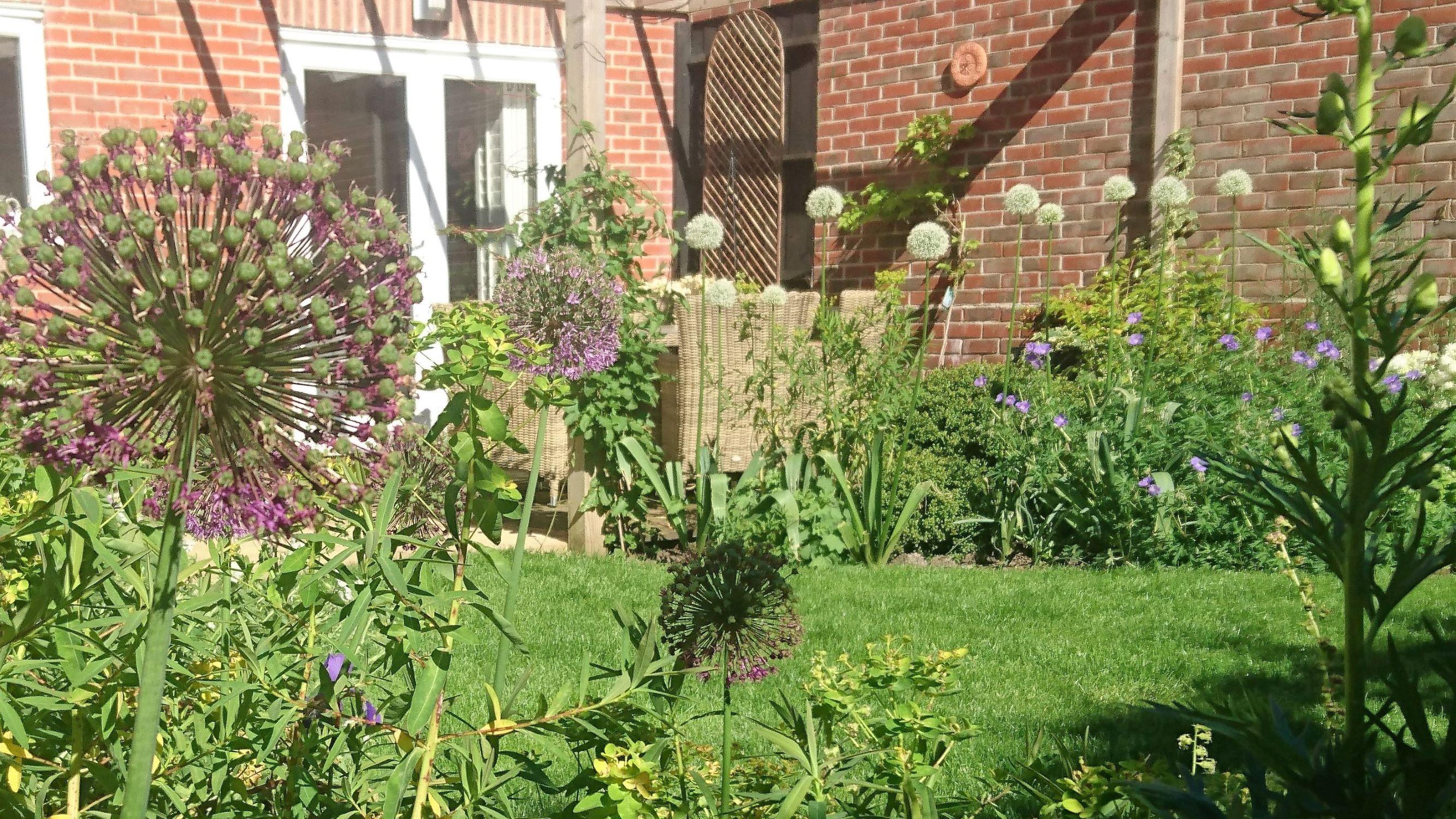 small town garden landscape 04.jpg