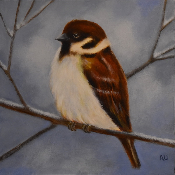 "Winter Sparrow 12 x 12"" - sold"