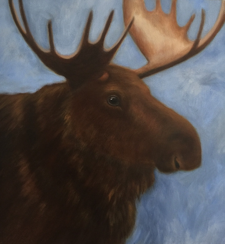 Moose at the Marsh 16 x 16""
