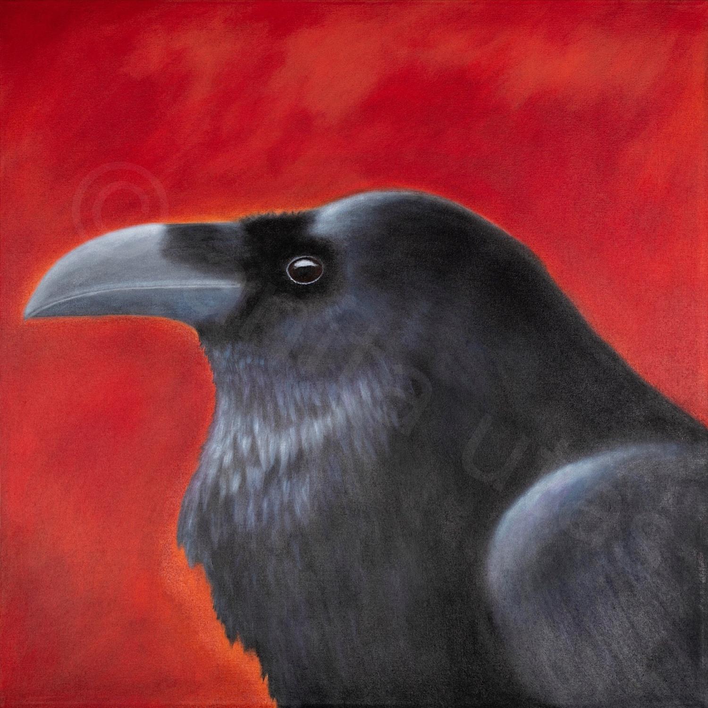 "The Messenger 30 x 30"" - acrylic on canvas"