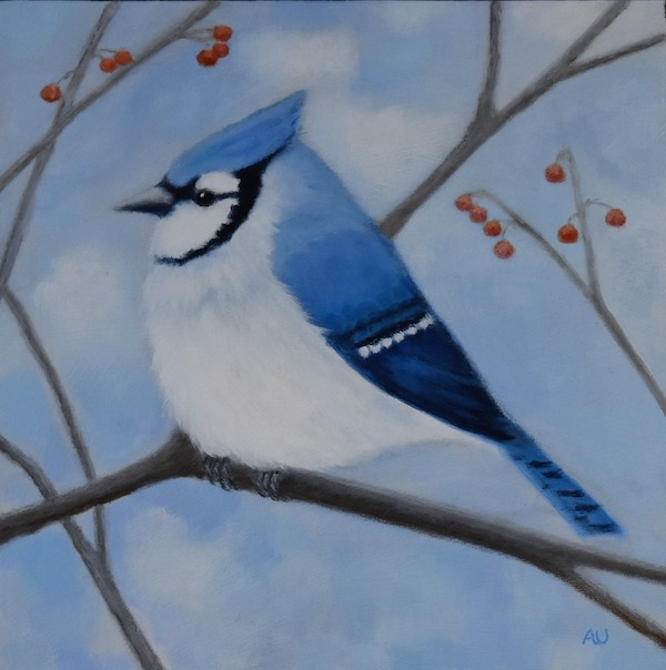 """Blue Jay with Winter Berries 12"""" x 12""""- sold"""