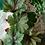 Thumbnail: MOLTON BROWN Geranium Nefertum Bath & Shower Gel