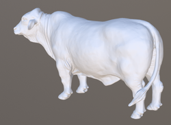 Edited 3D model using GeoMagic Wrap.
