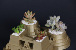 3D printed Temple with 4 Succulents