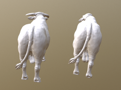 A 3D model 'before and after'
