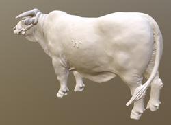 The 3D model after 3D scanning.