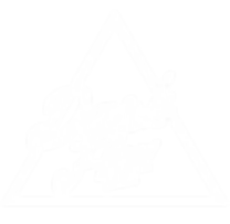 Dark Flow Studios Logo