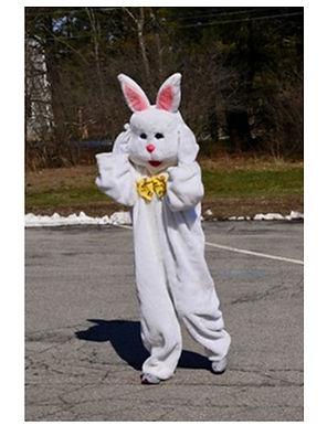 Tall bunny.jpg