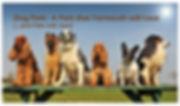 Dog Park flyer.jpg
