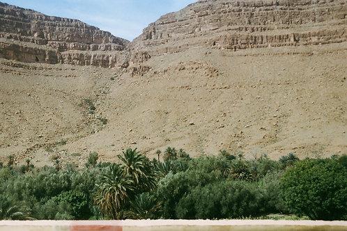 Desert meets water