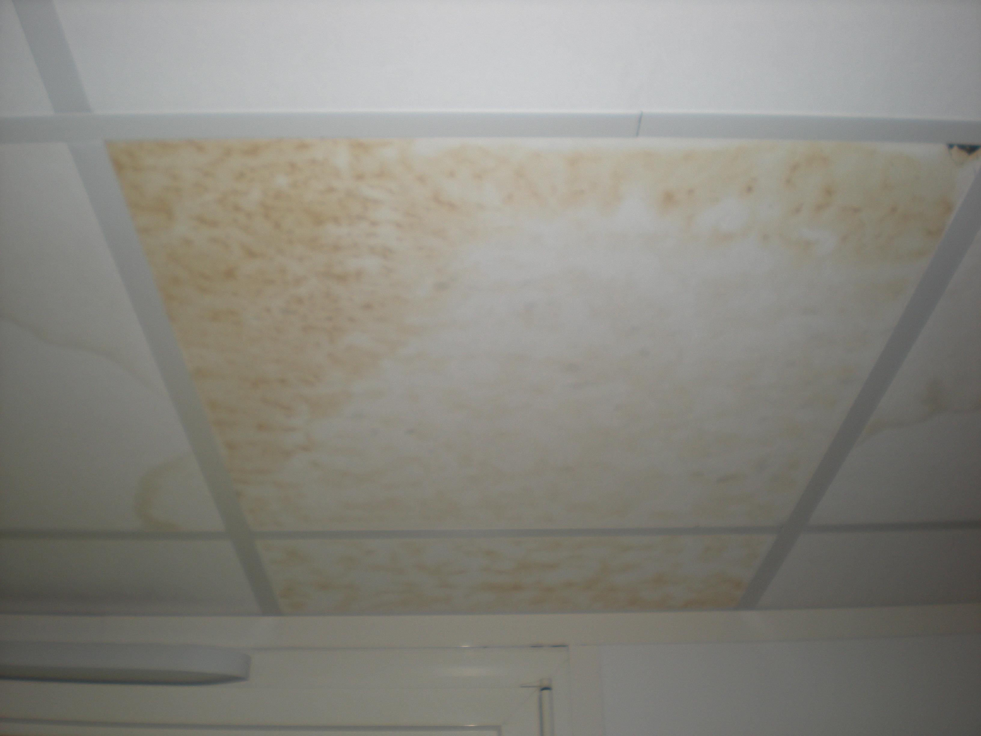 Infiltrations faux plafonds