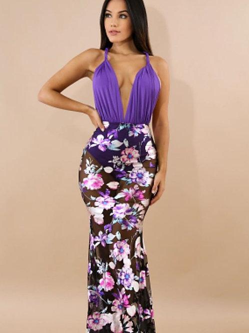 Sasha Sheer Dress