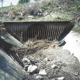 Heavy Duty Steel Trash Rack