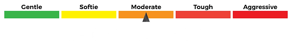 Moderate.png