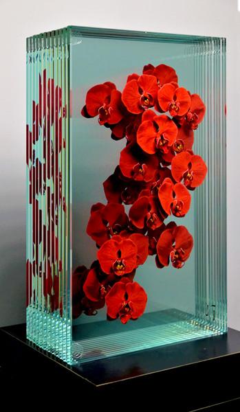 Phalaenopsis in Red 20x12x6.5in