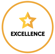 Precision Values Excellence