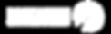 Precision-Logo-TransparentWhite-LRG.png