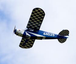 Cub In Flight