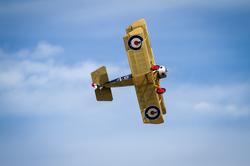 Chin Chow In Flight