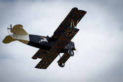 Northern Aces Fokker In Flight