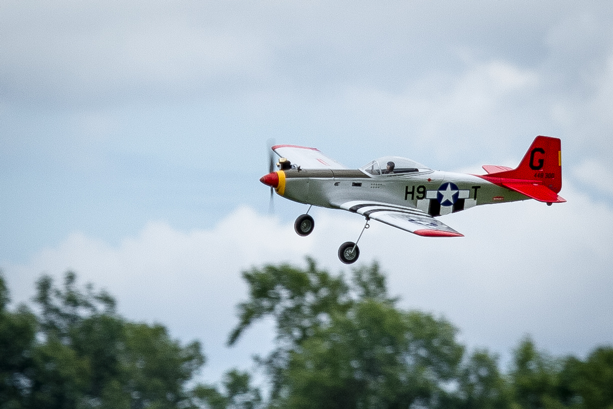 Northern Aces P-51 Mustang