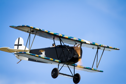 Northern Aces Fokker D.VII