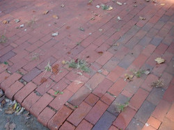 Paver - Before