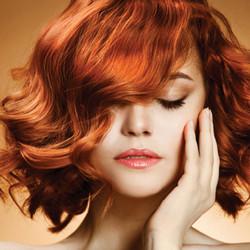 COLORIST HAIR STUDIO & SPA
