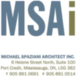 MSAi Logo from MS.JPG