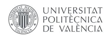 Universitat Politecnica de Valencia, Spain
