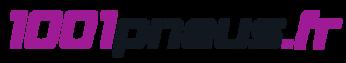 logo-1001pneus.fr.png
