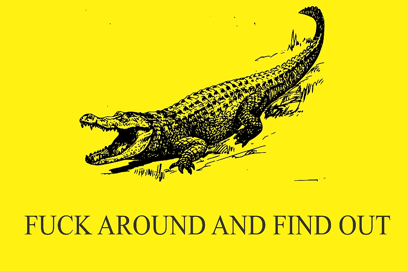 Florida man flag