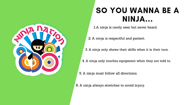 So you wanna be a  ninja (1).png