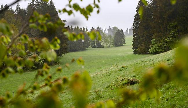 Sulzbrunn - 20200505 - 001[17348].jpg