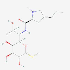 Линкомицин (Lincomycin)