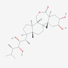 24- эпибрассинолид
