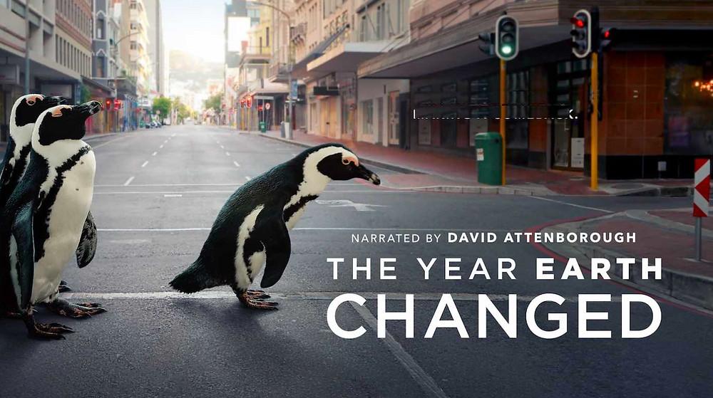"""Dokufilm, """"Das Jahr, das die Welt veränderte"""" von David Attenborough"""