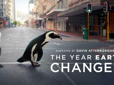 Earth Day: Wie sich Tiere die Natur in Südafrika zurückerobert haben