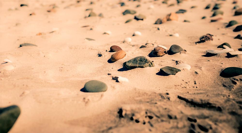 Muscheln und Steine am Bloubergstrand
