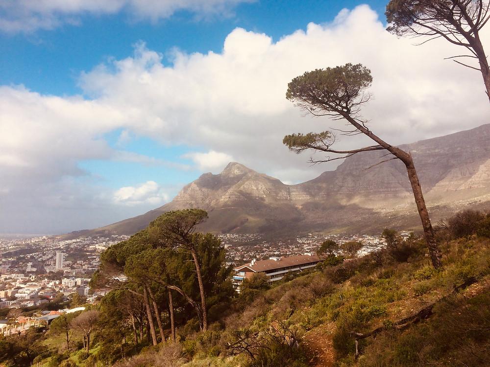 Kapstadts Nebensaison ist günstiger und das Klima etwas frischer