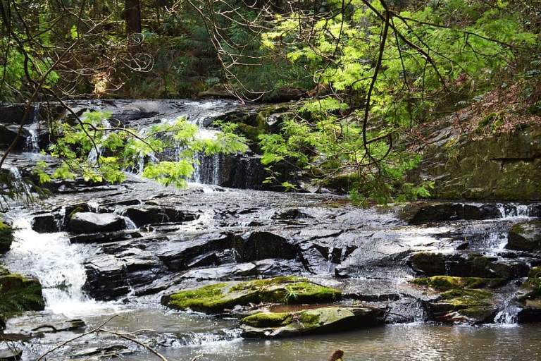 Hogsback Wasserfall