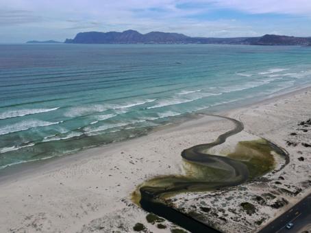 Kapstadts Umwelt- und Recycling-Strategien