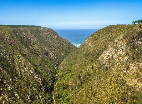 Die Garden Route: Der schönste Roadtrip Südafrikas